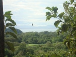 Lots for Sale in Plantation Acres, Costa Rica