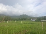 View of lot for sale in Jaco